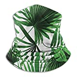 Realistic Vivid Leaves Of Palm Tree Growth Ecology Lush Botany Themed Print Unisex Winter Fleece Neck Warmer Gaiters Hairband Cold Weather Tube Face Mask Thermal Neck Scarf Outdoor Uv Protection Party
