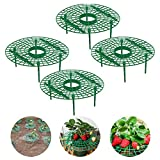 Strawberry Supports Stand Plant Climbing Vine Pillar Garden Stand Strawberry Growing Racks Strawberry Growing Frame Keeping Fruit Elevated to Avoid Ground Rot
