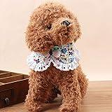 Collier ajustable pour animaux de compagnie avec Costume de cloche Bowknot dentelle florale collier pour chien chiot collier mignon pour petits chiens chats