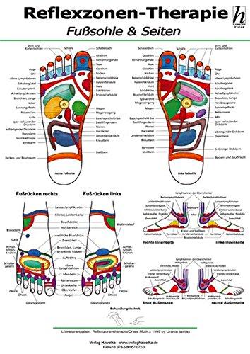Hawelka Verlag:<br />Reflexzonen-Therapie Poster - Fußsohle & Seiten DIN A2 - jetzt bei Amazon bestellen