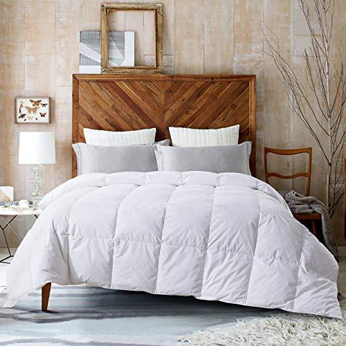 (75% OFF) 100% Cotton Goose Down Comforter $22.25 Deal