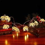 OSALADI Elephant String Lights Metal Animal Fairy Lights Battery Operated Star LED Hanging Garland Light for Wedding Birthday Bedroom Curtain Yard Garden Decoration