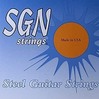 12 string pedal steel guitar