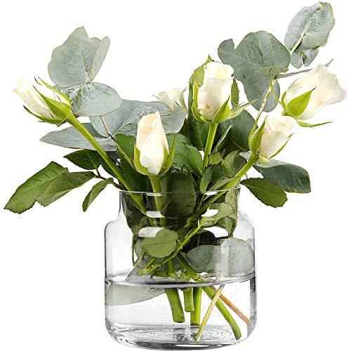 GIESSLE 12 teiliges Vasen Set Vase 10cm x 10cm Blumenvase Tischvase aus Glas Dekovase Glasvase