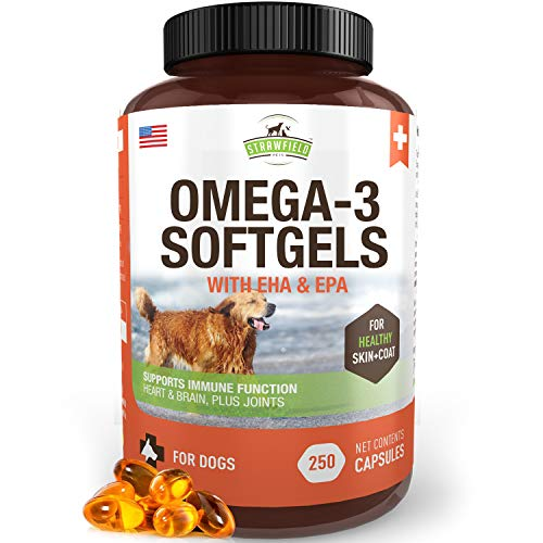 Best Omega Fish Pill for Dogs