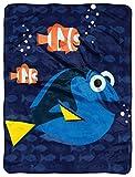 Disney-Pixar Finding Dory, 'Bubbles in Water' Micro Raschel Throw Blanket, 46' x 60', Multi Color, 1 Count