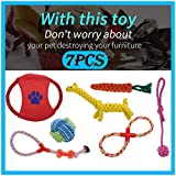 Flurries 🐶 7PCS Dog Self-Playing Chew Trainning Ropes Set - Multifunction Pet Molar Toy - Elastic Interactive Doggie Bite Chewers - Puppy Teeth Clean Tool Dental Care Accessory Supplies (As Shows)