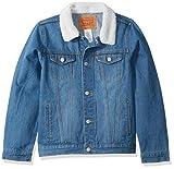 Levi's Boys' Toddler Denim Trucker Jacket, Legendary/Sherpa, 4T