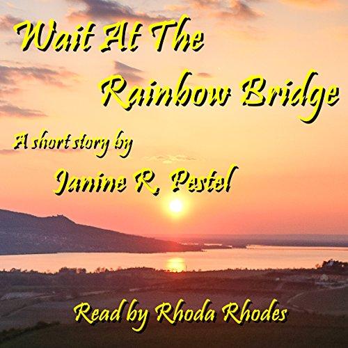 Wait at the Rainbow Bridge audiobook cover art