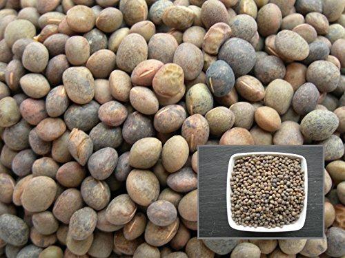 Vesce Commune Mery - 2 sachets de 15 grammes - Vicia Sativa L. - Garden Vetch - (Engrais Vert - Green Manure) - SEM02