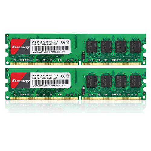 Kuesuny 4GB Kit (2GBX2) DDR2 667 DIMM RAM, PC2-5300/PC2-5300