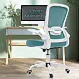 【2021 Newer Model】 Office Chair, Ergonomic Desk Chair with Adjustable Lumbar Support, High Back Mesh Computer Chair with Flip-up Armrests-BIFMA Passed Task Executive Chair for Home Office, Blue