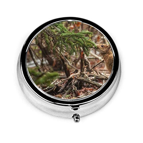 3 Compartment Pill Box Rabbit Grass Tree Sit Luxury Travel Kit Storage Metal Round Silver Button Pill Dispenser Vitamins Fish Oil Supplements