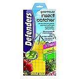 Defenders 467099 - Atrapa Insectos para Invernadero (5 trampas)