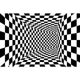 Gpink Alfombra De Visión Estéreo En Blanco Y Negro 3D Sala De Estar Rectangular Whirlpool Alfombrillas para El Hogar Lavables Impermeables Y Antideslizantes