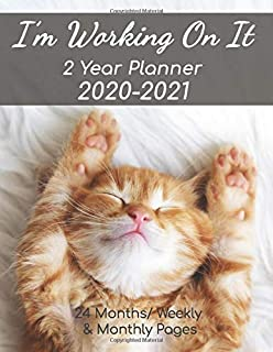 2 Year Planner 2020-2021: Cat Lovers 24 Month Calendar | Monthly and Weekly Organizer | 8.5 X 11 | 132 Pages