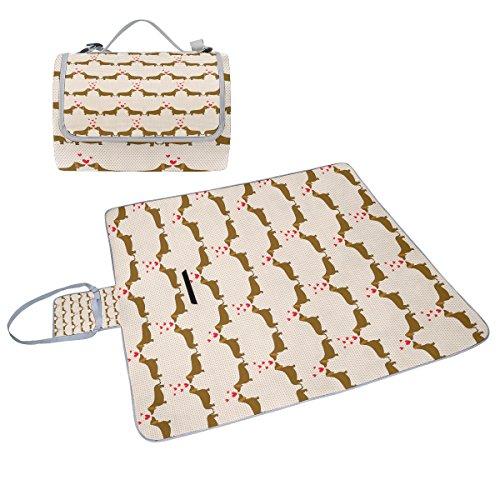 COOSUN Dachshund Hunde Box Picknick-Decke mit Matte Schimmel resistent und wasserdicht Camping-Matte für rving, Picknickdecke, Strand, Wandern, Reisen und Ausflüge
