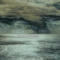 Skagerrak [12 inch Analog]