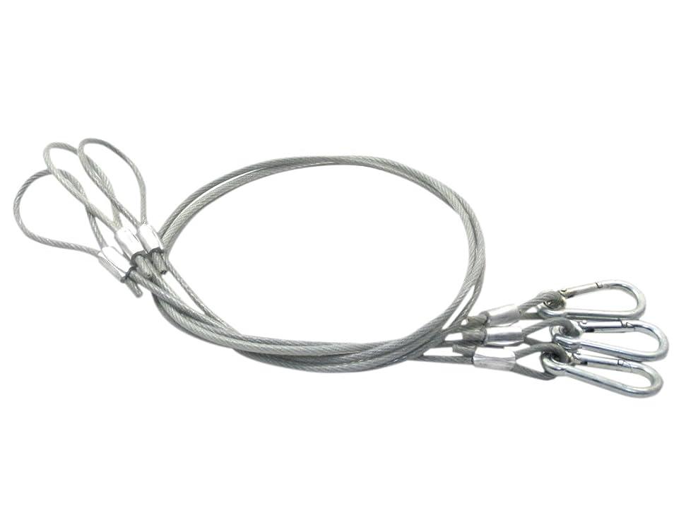 鮮やかないじめっ子教養がある(Aideaz) 超 ロング 100cm長 落下防止 セキュリティ ワイヤー セーフティ ケーブル 直径 5mm (3本 セット)