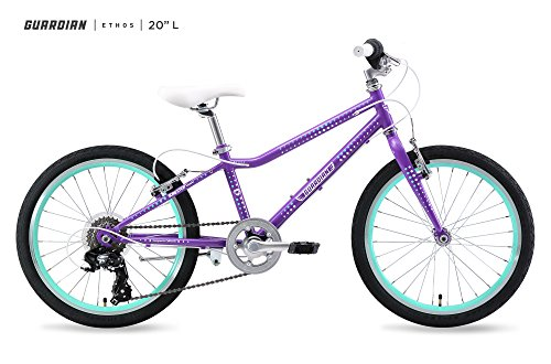 Product Image of the Guardian Ethos Bike