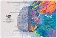 ZZFJF 1000ピースのクリスマスジグソーパズル、大人のためのゲームアートワーク幻想的な左右思考の脳クリエイティブアートパズル1000ピースのジグソーパズル50x75cm