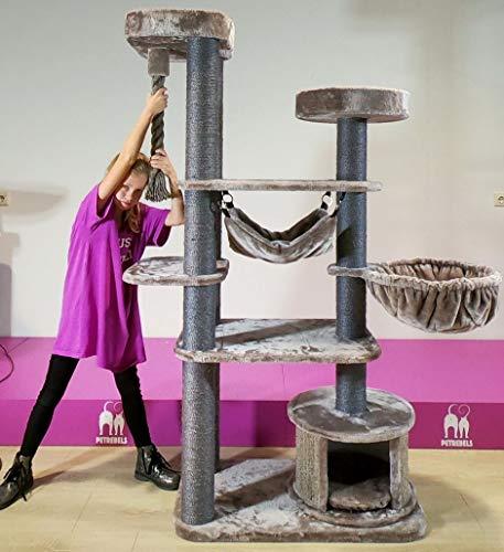 Petrebels Kratzbaum Grosse Katzen stabil XL Scenic View 175 Cappuccino Höhe Qualität mit Hängematte und Sisal-Seil Farbe Cappuccino Braun 175 cm hoch