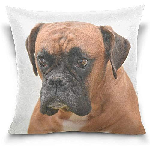 July Brown Boxer Dog Portret vierkante decoratieve kussensloop voor bank slaapkamer auto