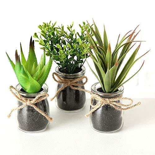 LB H&F 3er Set künstliche Pflanzen Sukkulenten Kunstpflanze als Dekopflanze mit Glastopf Deko