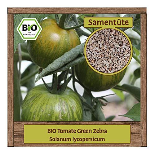 BIO Tomate Samen Sorte Green Zebra (Solanum lycopersicum) Gemüsesamen Tomate Saatgut