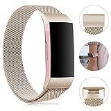 Gogoings Bracelet pour Fitbit Charge 3 - Bracelet Rechange Sport Band Réglable en Acier Inoxydable...