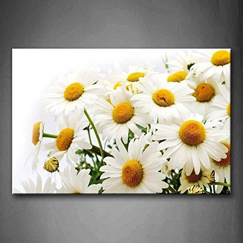 NIMCG Immagini per pareti Margherite Petali Cuori Stampa su Tela Poster Floreali con per la casa Soggiorno Decor (No Frame) R1 50x70 CM