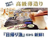 天然 スズキの薄造り1~2人前90g×1皿 島根大田鮮魚市場 上品な旨味 刺身よりも旨い高級薄造りだから味わえる旨味 日帰り漁のうまみをご堪能ください