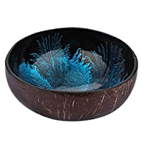 BESTonZON Coconut Bowls Natural Coconut Shell Storage Bowl Candy Container Nuts Holder