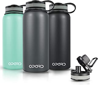 Best stainless steel tervis water bottle Reviews