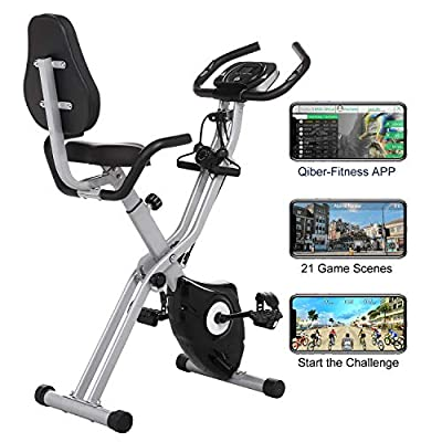 2 in1 Folding Exercise Bike, Indoor Stationary Bike with 10-Level Adjustable Magnetic Resistance and Arm Training Bands (Black)