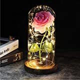 Beauty and The Beast Rose, Pink Silk Rose Love Forever Artificial Flower Dome with LED Lights, Romantic Gift for Christmas Valentine's Day Mothers Day Wedding Anniversary Birthday