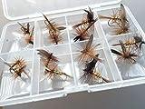 Pack de 16 moscas secas Wickmans fancy para pesca de trucha, incluye caja con cierre de clip