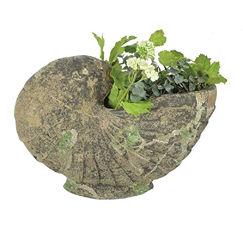 Linoows Bac à Plantes Nautilus, Coquille Récipient de Plantes Dans Style Baroque De Bemooster Céramique