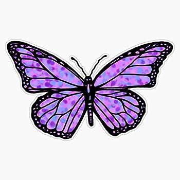 vinyl butterfly decals