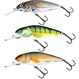 Salmo Perch HOLOGRAPHIC GREY SHINER 80mm Deep Runner