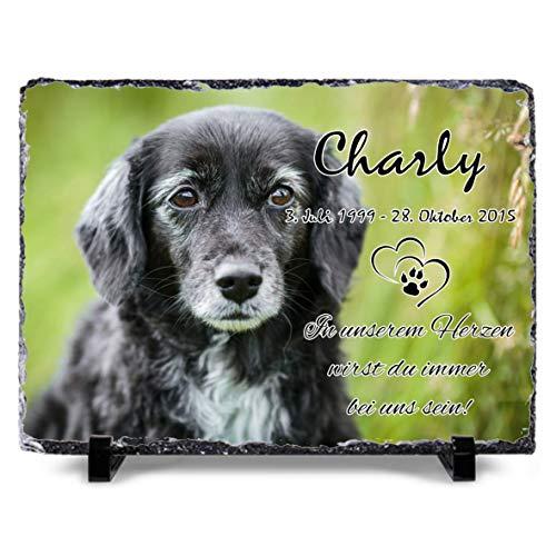 OS Manufaktur® - Gestalte selbst Deine Schiefertafel mit Bild 30x20 cm Gedenktafel für Menschen oder Haustiere Hund Katze personalisiert Gedenkplatte,Grabschmuck, Andenken (20x30cm Foto groß)