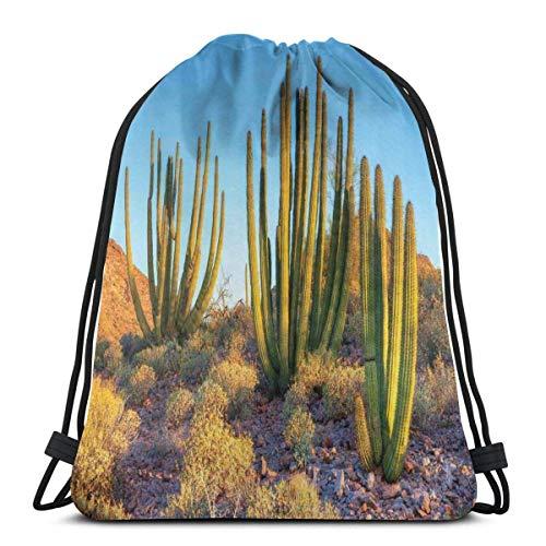 Bolsa de deporte con cordón para gimnasio, cincha de viaje, para mujeres, hombres, niños, foto de la naturaleza, cactus del desierto con picos y montañas