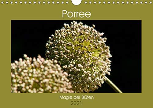 Porree - Magie der Blüten (Wandkalender 2021 DIN A4 quer)