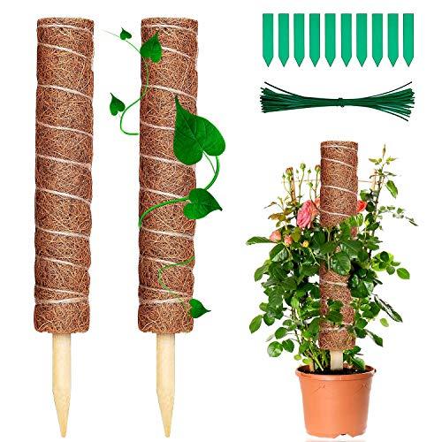 WELLXUNK® Palo Trepador De Plantas, 2 Piezas 40cm Palo de Tótem de Coco Palo de Musgo de Coco, Bastón de Tótem de Musgo de Coco, para Enredaderas Soporte de Plantas Extensión Escalada Plantas