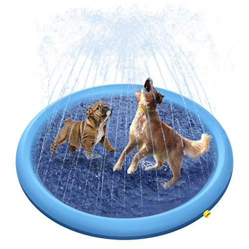 Peteast -   Hundepool für