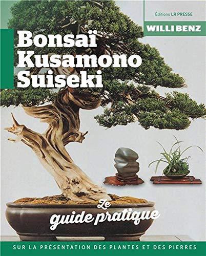 Bonsaï, kusamono, suiseki