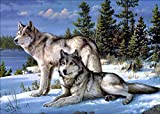 Kit de pintura de diamantes 5D para bricolaje, diamantes completos, dos lobos, bordado, diamantes de...