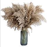 Country-hill Freshly Reed Ramo de flores decorativas de terciopelo real para boda, bricolaje, fiesta en casa (marrón)