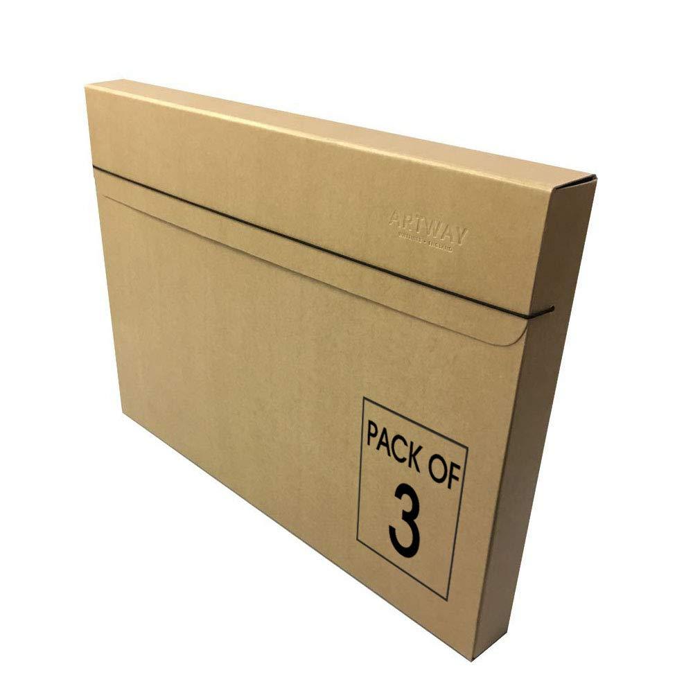 Artway Folio A2 Caja de Almacenamiento, 3 Unidades: Amazon.es: Hogar