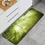 Throwpillow Alfombrilla de Cocina Antideslizante Rayos de Sol del Bosque en Woodland Decoración Piso de Alfombra para baño, Sala de Estar, Oficina, fregadero-120cm x 45cm